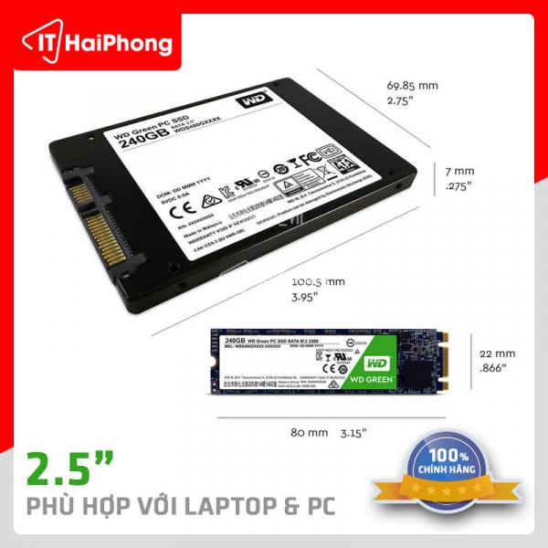 SSD WD 240gb